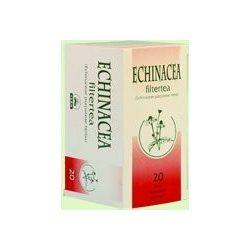 Bioextra echinacea tea 20x2g fehér 40 g
