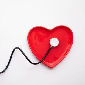 Szív, vérkeringés, koleszterin
